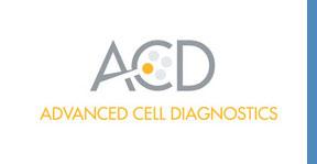ACD website