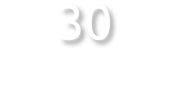 30 Billion Dollar Companies